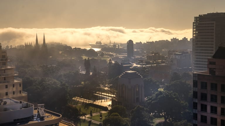 A spectacularly foggy sunrise in Sydney's CBD, looking over Hyde Park.