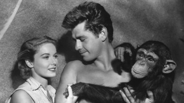 "In this photo released in 1955 by RKO, Gordon Scott, the screen's eleventh Tarzan, makes his debut as Tarzan in <i>Tarzan's Hidden Jungle</i>,"" as he is shown in this undated photo with actress Vera Miles who plays UN nurse, and Zippy, the chimp, as Cheta."