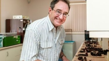 Dr Tim O'Hare will lead a team on a new $10 million project to find new superfoods.