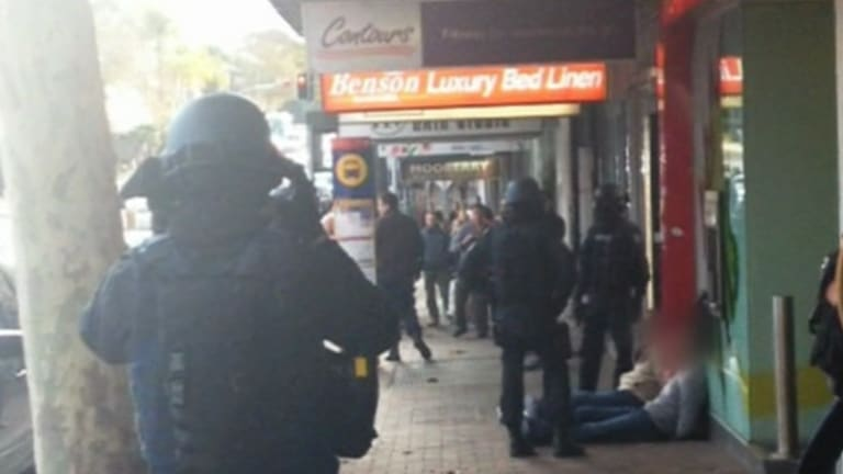 Swoop: Police take the two suspects in Neutral Bay.