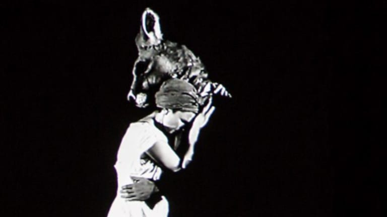 Romance with a man-kangaroo. The woman pursues a dangerous course to be with her strange love interest more often.