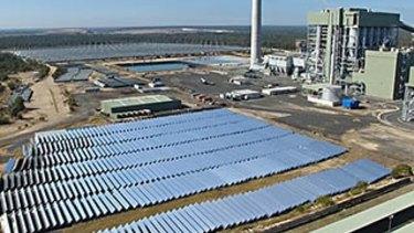 Solar panels lie in waste at Kogan Creek Power Station, near Chinchilla