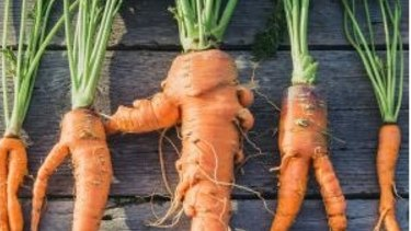 Home-grown carrots may not look as perfect as their supermarket counterparts but their taste is far superior.
