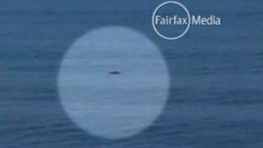 Mysterious: a dark shadow in the water during the quarter-finals of the J-Bay Open.