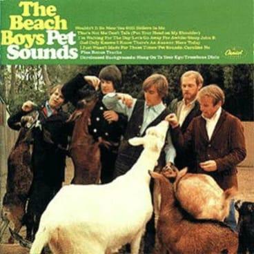 Pet Sounds was the 11th studio album Brian Wilson wrote for the Beach Boys.