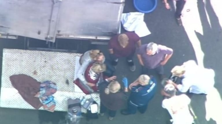 A woman in her 50s is treated after being bitten by a monkey at Movie World studios, where the Pirates of the Caribbean movie is being filmed.