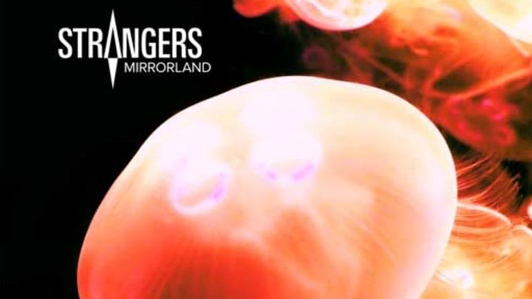 Strangers, album cover.