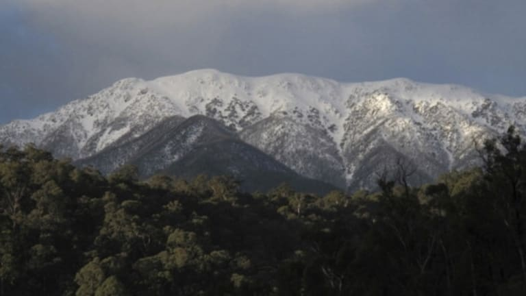 A body believed to be that of a missing 88-year-old hiker was found in the Mount Bogong area on Sunday morning.