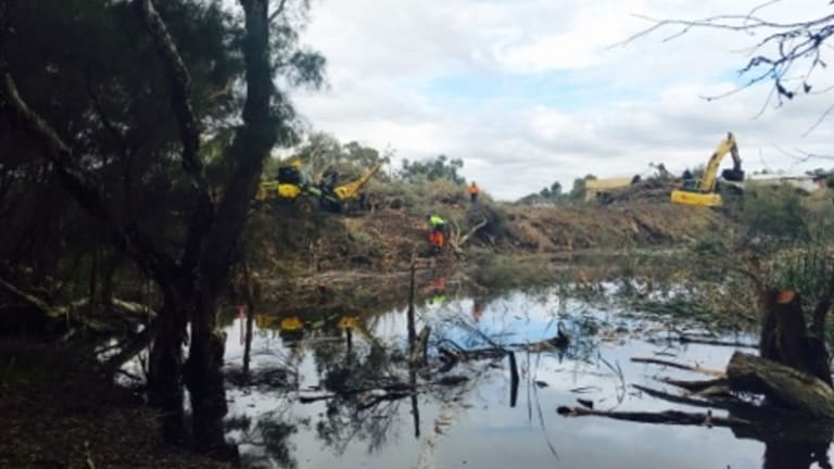 Bulldozers at work near the Eric Singleton Reserve bird sanctuary.
