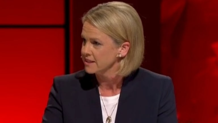 Minister responsible for drugs and alcohol policy Fiona Nash said there had been no cuts to treatment services.