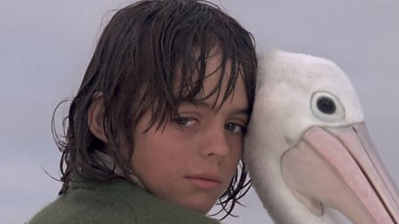 Much Loved Australian Film Storm Boy Is To Be Remade In