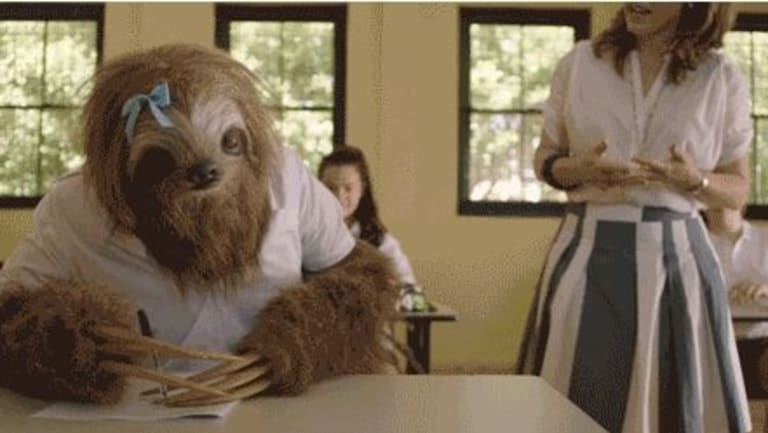 """When you realise you should have hit the books and not the bong"": one of the sloths from the Stoner Sloth campaign."