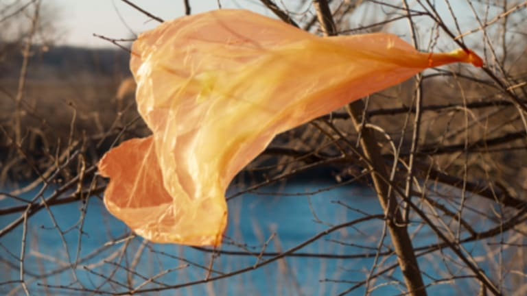 Most plastic bags end up in landfill, or a lesser amount as litter. They can last from 20 to 1000 years.