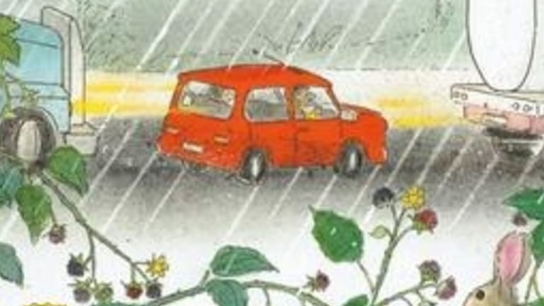 Picture book of the year, <i>Home in the Rain</I>, by Bob Graham.