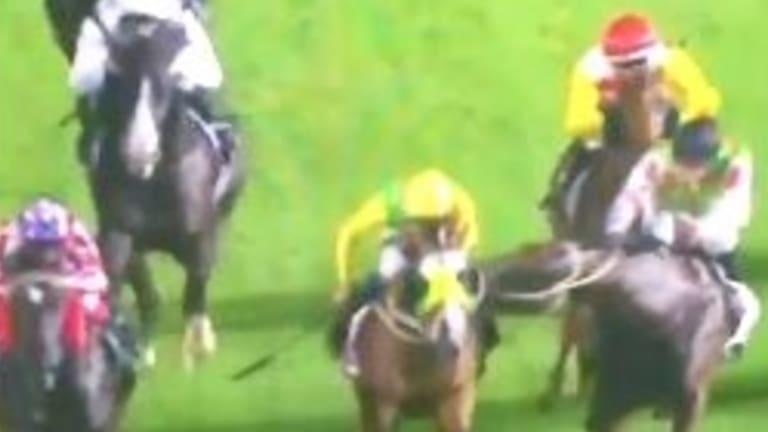 Horsey bite: Majaska lashes out at Canterbury on Friday.