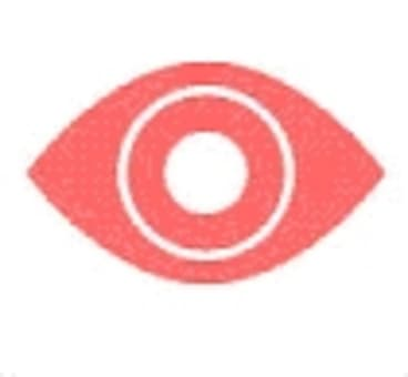 The Witness app.