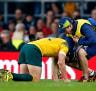 Rugby World Cup final 2015: Concussed Matt Giteau gave Michael Cheika a 'gobful'