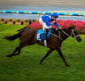 Winx scares off challengers as she is ready for grand final day in Cox Plate