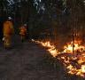 Sydney weather: Dry, warm times prompt hazard reduction burn delays