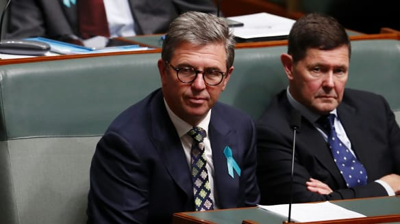 High Court has 'power and duty' to hear challenge against Turnbull government MP David Gillespie