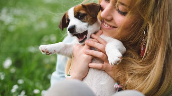 Four ways having a pet increases your lifespan