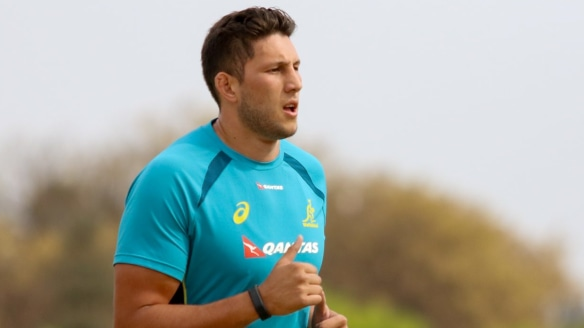 Testing times: Wallabies second-rower Adam Coleman believes the Springboks will have a point to prove this weekend.
