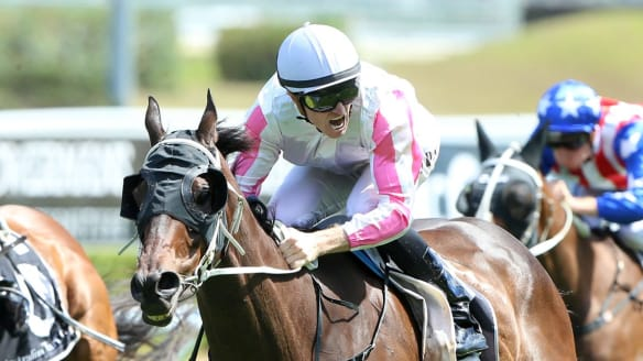 Joe Pride chases another Gosford Cup with Destiny's Kiss