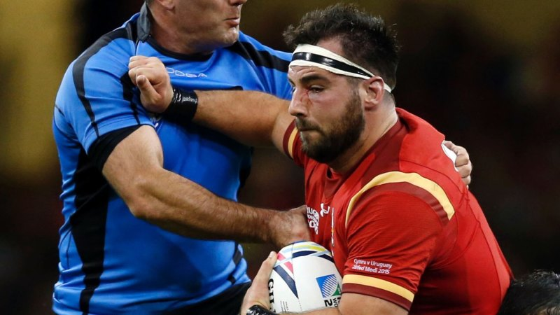 Wales hooker Scott Baldwin's hand bitten by lion ahead of