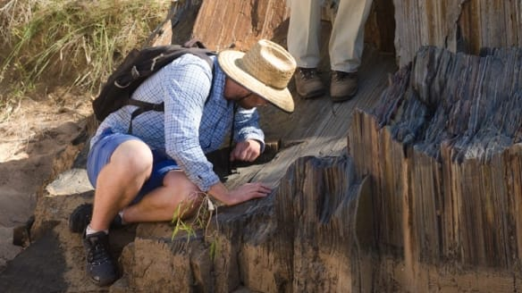 New research suggests Australia and North America were once neighbours