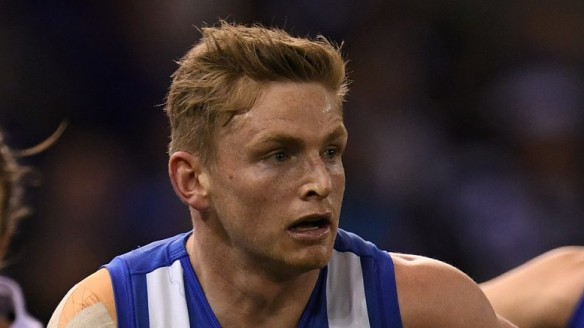 Jack Ziebell led North Melbourne under 'great duress', says Brad Scott