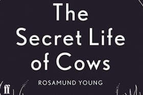 </i>The Secret Lives of Cows</i>, by Rosamund Young.