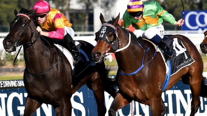 Tied jockey gets devoured