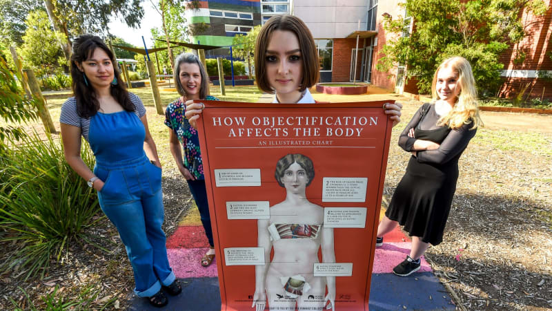 Fighting school sexism: feminist theory hits classrooms