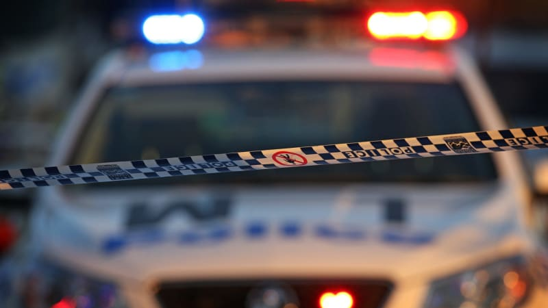 australian federal police act 1979 pdf