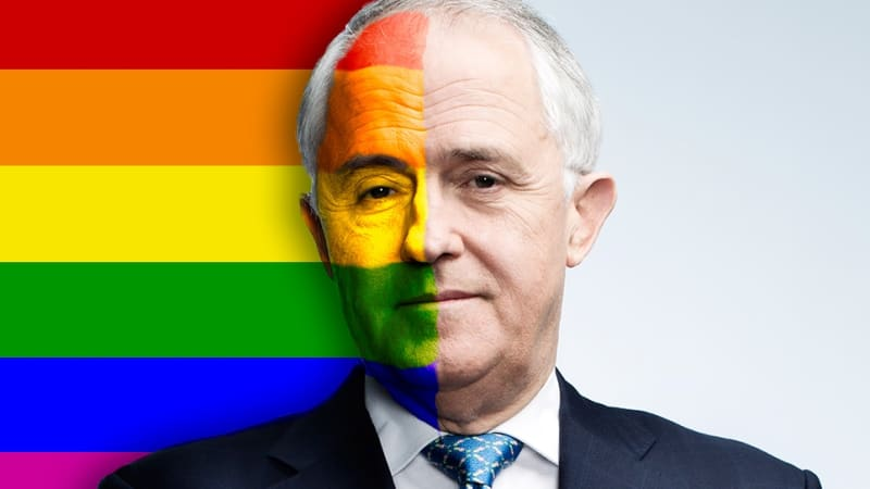 Same-sex marriage postal plebiscite a debacle likely to happen for Malcolm Turnbull