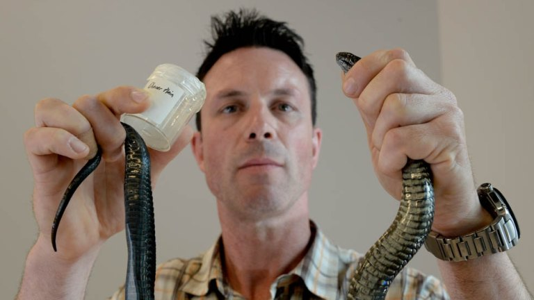 Venom bank to milk the lethal powers of some of Australia's