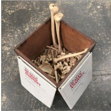 Box of human bones' pulled from auction sale