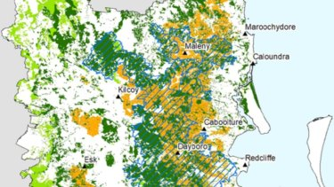 The blue-hatched areas show  critical koala habitat north of Brisbane in August 2020.