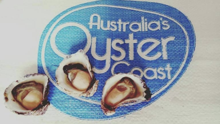 The NSW government invested $3.3 million in the company, Australia's Oyster Coast.
