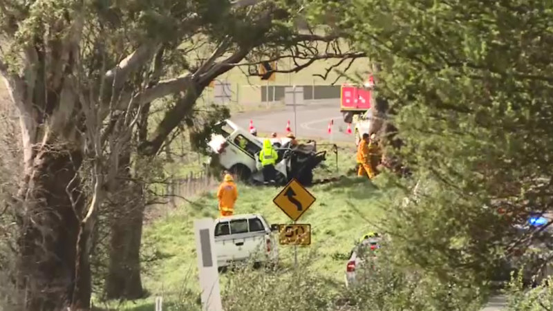 AFL identity killed in Ballarat car crash