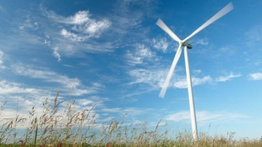 The City of Bayswater is probing renewable energy options in a bid to be completely carbon neutral.