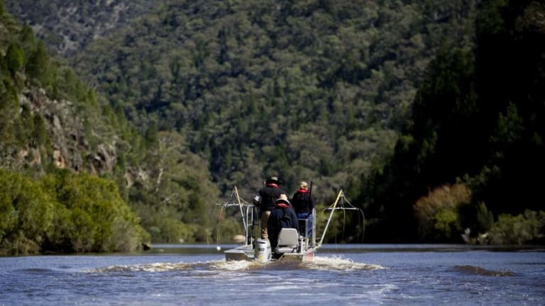 NSW Department of Primary Industries take to the Upper Murrumbidgee River in an attempt to tackle the carp population.