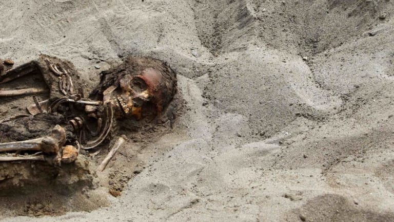 In the first round of excavations, the remains of 42 children and 74 camelids were unearthed in the fishing town of Huanchaquito, Trujillo.