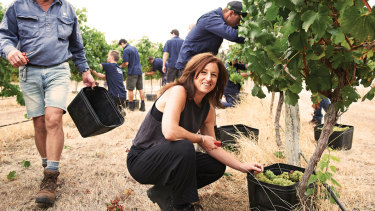 Vasse's chief winemaker Virginia Willcock is very much hands-on when it comes to making their wine.