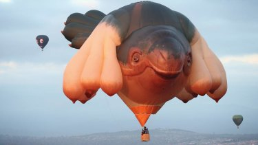 The Skywhale is at least twice as big as a standard hot-air balloon, weighs half a tonne and used more than 3.5km of fabric.