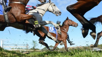 Shortened Warrnambool racing carnival revealed