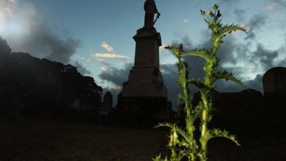 'We can't keep up': Cemetery sector uncertainty is panicking buyers