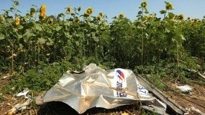 Transport organiser of missile that shot down MH17 in jail, says Ukraine