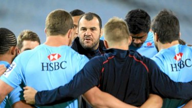 Michael Cheika coached the Waratahs to a Super Rugby title in 2014.