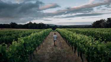 Windance Wines in Yallingup is one of the wineries that make up the Small Family Vineyards of Margaret River.